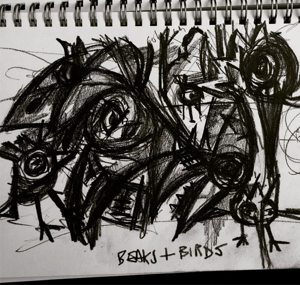 Birds and Beaks, Sketchbook